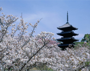 Japan travel destinations - Kyoto