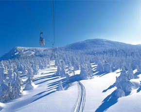 Japan holiday packages - snow skiing and snowboarding