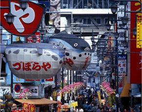 Japan day tours - Osaka tours