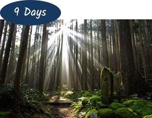 Kumano Kodo Pilgrimage Walk 9 days Package Tour