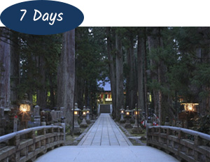 Discover Mt Koya 7 days Package