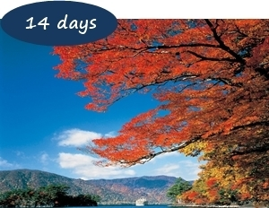 Japan Autumn Leaves Holiday Packages - Hidden Autumn Leaves Northern Japan 14 days