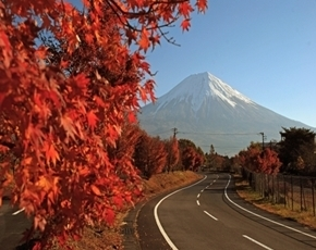 Japan holiday packages - Autumn Leaves - Koyo