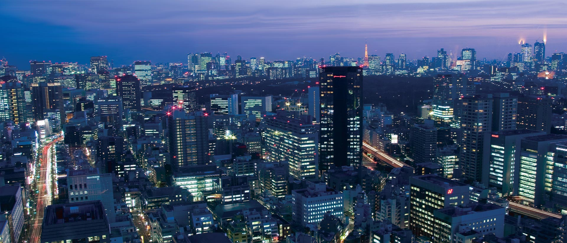 Japan travel specialist - Tokyo night view