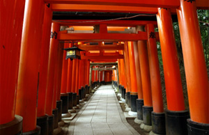 Kyoto Private Cycling Tours - Fushimi Inari & Thousand Kannon Tour