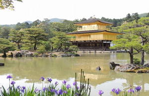 Kyoto Private Cycling Tours - Kinkakuji Arashiyama Golden Tour