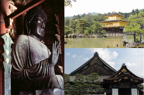 Kyoto Nara 1 day tour