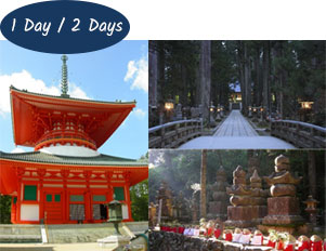 Mt Koya 1 or 2 day tour