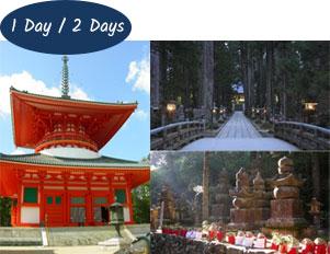 Mt Koya 1 or 2 day tour