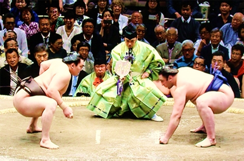 tokyo-sumo-tournament-image