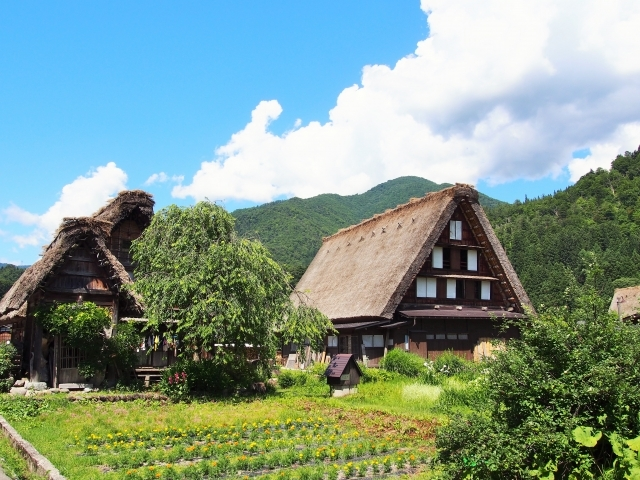 Fully escorted Japan package tours