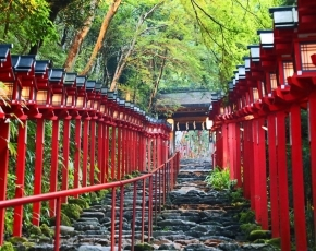 fully-escorted-japan-package-tours