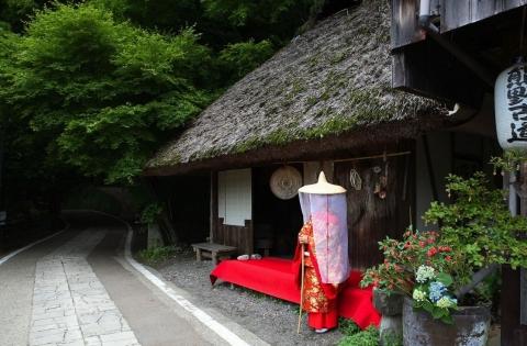 Kumano Kodo Nakahechi Route 4 days